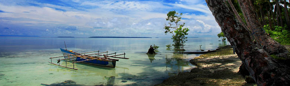 Photography From Biak